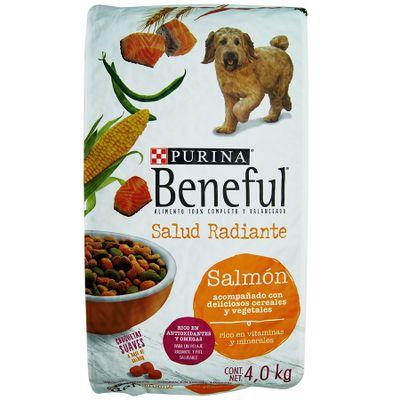 Mascotas-Perros-Alimento-Perros_7501072203618_1.jpg