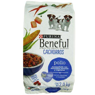 Mascotas-Perros-Alimento-Perros_7501072203625_1.jpg